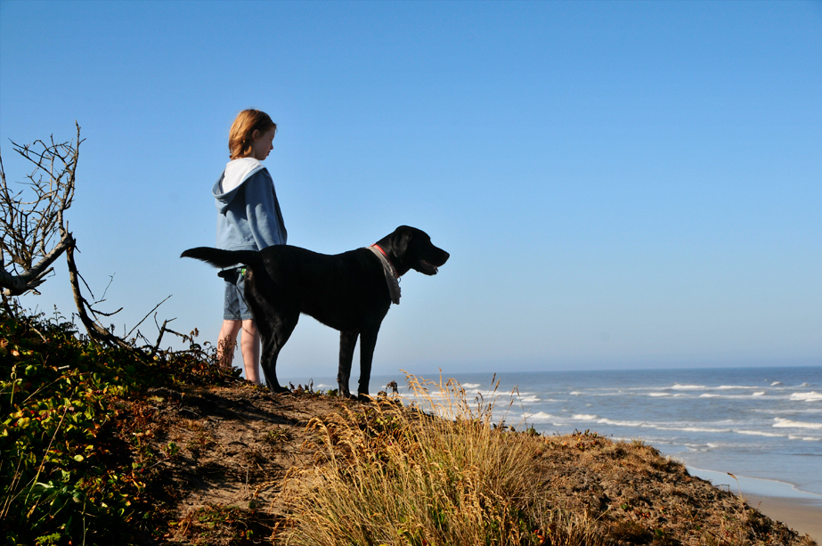 child and his dog overlooking and ocean beach